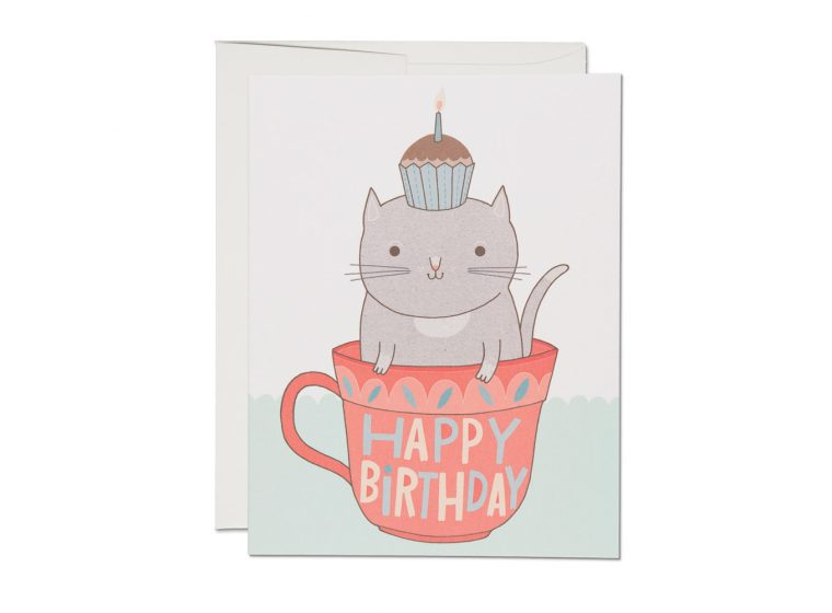 Teacup Cat