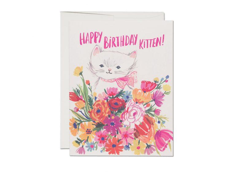 Happy B-Day Kitten