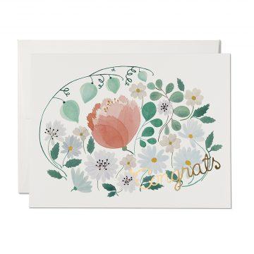 White Calendula