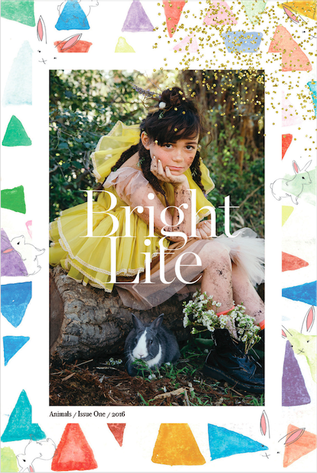 Bright Lite Magazine: Magazines for Kids, chosen by Red Cap Cards