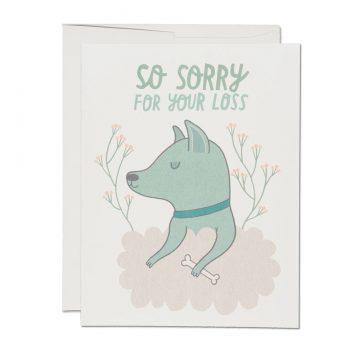 Dog Sympathy