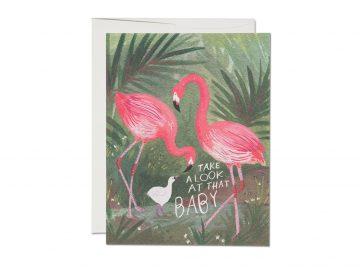 Flamingo Baby
