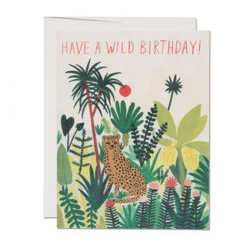 Cheetah Birthday
