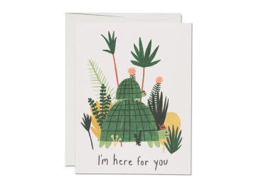 Here for You Turtles