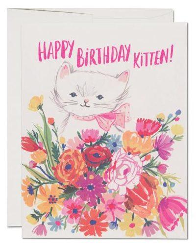 GAV1634-Happy-B-Day-Kitten-760x560